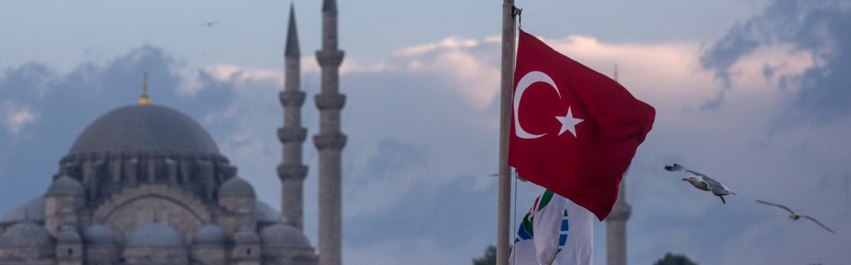 THE EMERGENCE OF TURKEY AS A REGIONAL POWER
